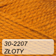 are_puch_30_2207_zloty.jpg