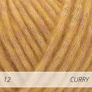 Wish 12 curry