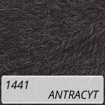 Nakolen 1441 antracyt
