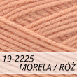 Kotek 19-2225 morela / róż