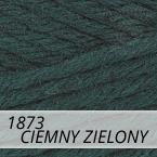 Sport Wool 1873 ciemny zielony