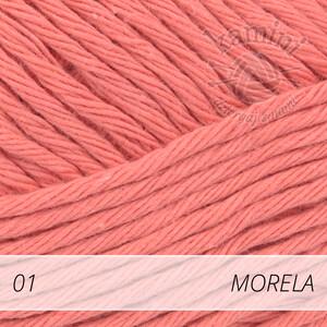 Paris 01 morela